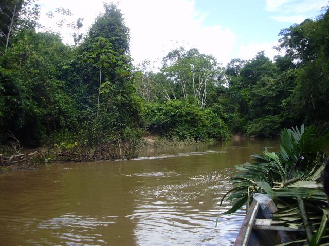 Paraná dos Moura